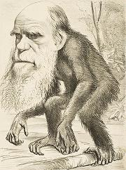 دانلود کتاب درباره تکامل و ژنتیک فرگشت و ژنتیک