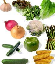 دانلود کتاب چگونه میوه جات و سبزی جات رو بهتر نگه داریم