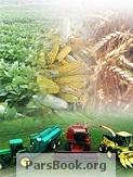 دانلود کتاب ایمنی در کشاورزی از رسول صیفی شلمزاری